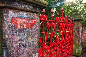 strawberry_fields_forever_by_jhalvorsen-d4qwh8o