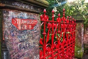 strawberry_fields_forever_by_jhalvorsen-d4qwh8o
