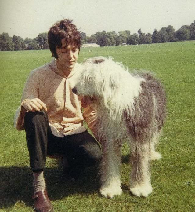 paul_mccartney_dog_martha